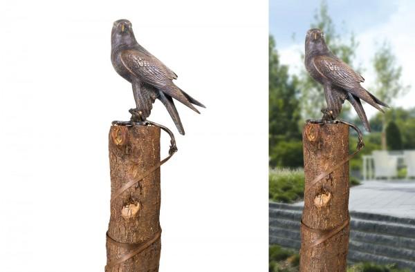 Falke mit Lederriemen Bronze Skulptur