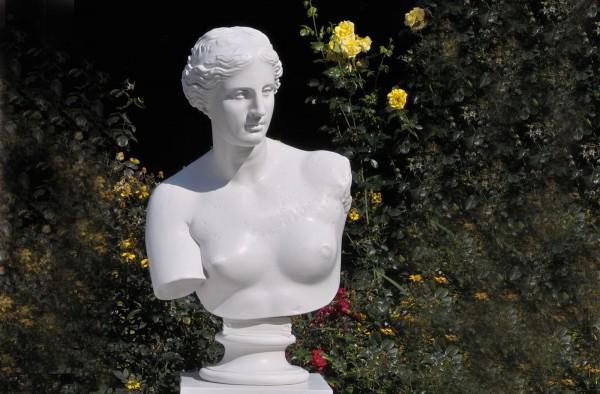 Bueste Venus von Milo Reproduktion